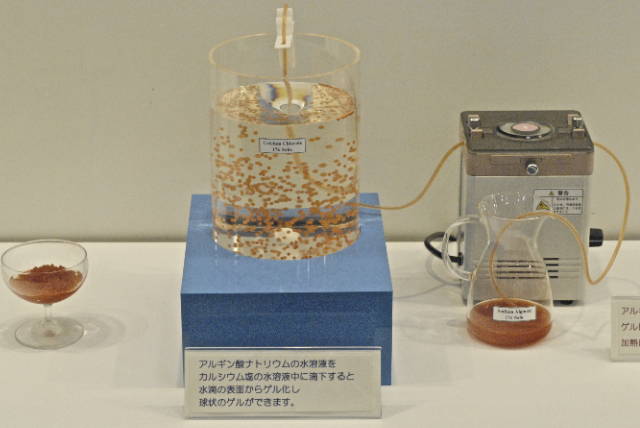 Manufacture of calcium aginate bead demonstration